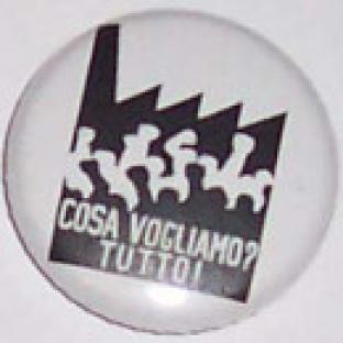 2008-03-06-spilla-vogliamo-tutto.jpg