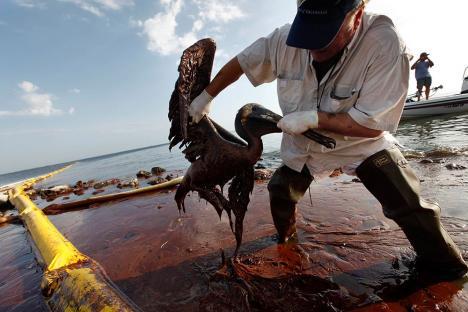 2010-06-14-oil-spill-10.jpg