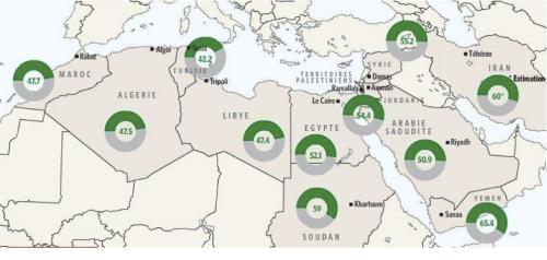 2011-05-02-disoccupazione-mondo-arabo.jpg