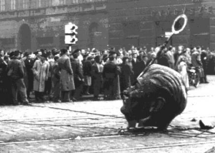 1956-10-23-budapest-stalin-statue-2.jpg